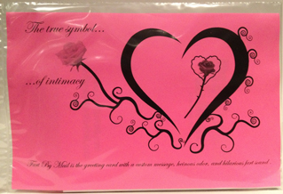 Valentine's Day Mailer Back